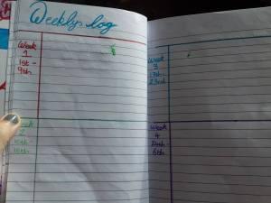 weekly-log